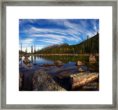 Jasper - Autumn Reflections Framed Print