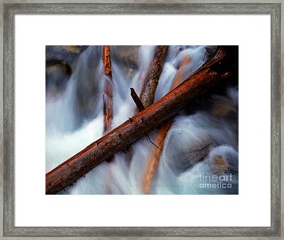 Jasper - Beauty Creek Logs Framed Print by Terry Elniski