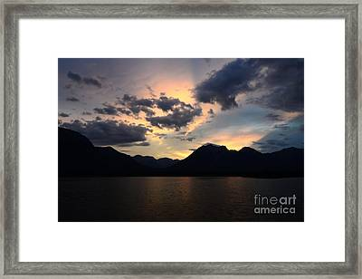 Jasper Quiet Time Framed Print by Bob Christopher