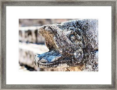 Jaws Of A Mayan Snake At Chichen Itza Framed Print by Mark E Tisdale