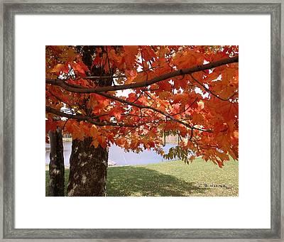 Jay Vermont Framed Print