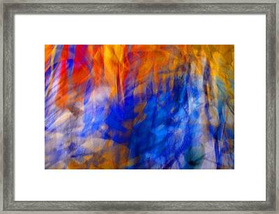 Framed Print featuring the photograph Jazz#2 by Karo Evans