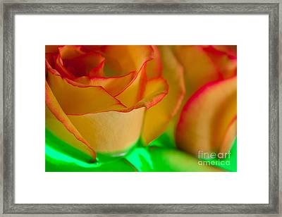 Framed Print featuring the photograph Jealousy by Bobby Villapando