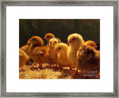 Jeepers Peepers Framed Print by Gerald Strine
