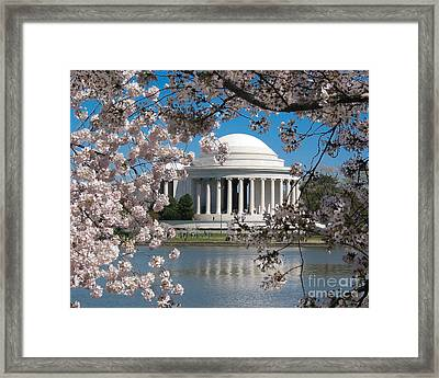 Jefferson Blossoms Framed Print by Dale Nelson