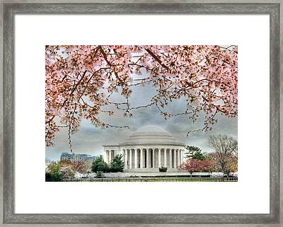 Jefferson Blossoms Framed Print by Lori Deiter
