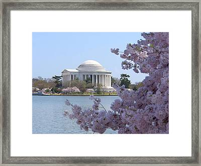 Jefferson Memorial - Cherry Blossoms Framed Print by Mike McGlothlen