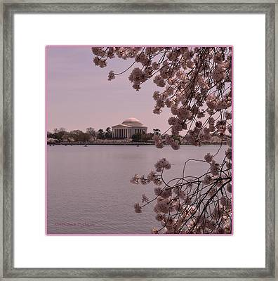 Jefferson Memorial In Spring  Framed Print by Sonali Gangane