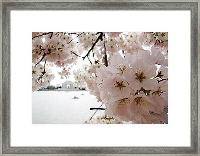 Framed Print featuring the photograph Jefferson Memorial by Jennifer Wheatley Wolf