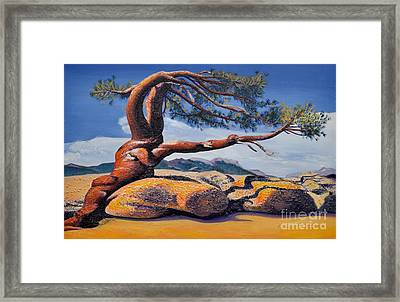Jeffrey Tree Framed Print