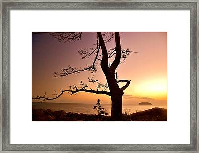 Jeju Sunset Framed Print by Yen