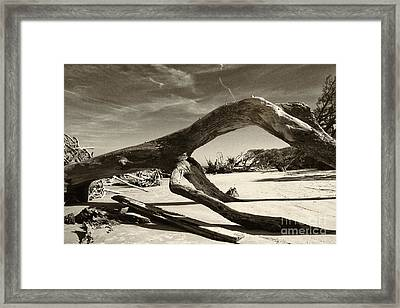 Jekyll Island Monster Framed Print