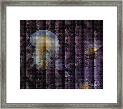 Framed Print featuring the photograph Jellies by Kathie Chicoine
