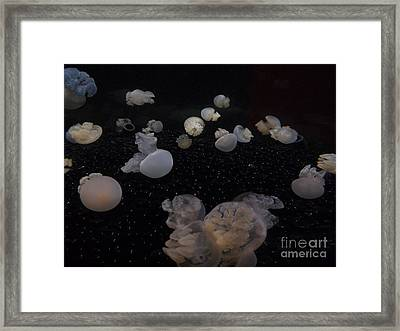 Jellies On The Moon Framed Print by Brigitte Emme