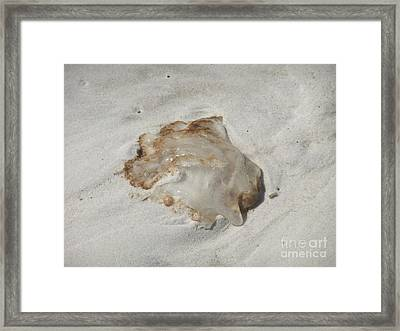 Jellyfish Moon Or Mushroom Framed Print by Deborah DeLaBarre