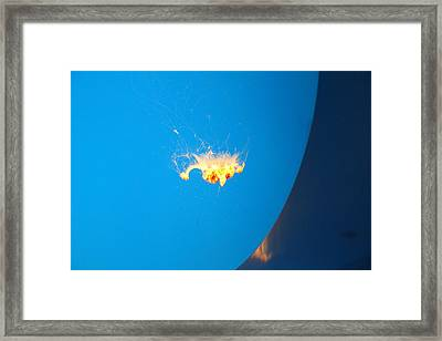 Jellyfish - National Aquarium In Baltimore Md - 12127 Framed Print by DC Photographer