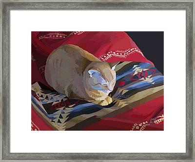 Jem And Blanket Framed Print
