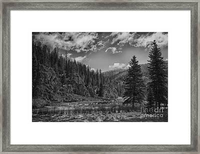 Jemez Mountain Spring-black And White V2 Framed Print by Douglas Barnard