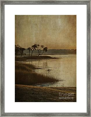 Jenkins Creek Dawn Framed Print by Terry Rowe