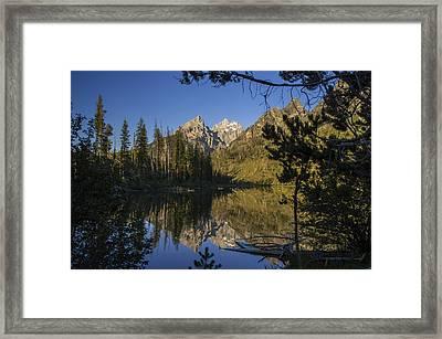 Jenny Lake Framed Print by Michael J Bauer