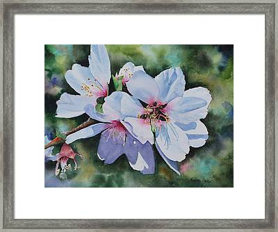 Jeremiah One Eleven Framed Print by Kathy Nesseth
