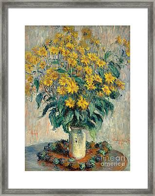 Jerusalem Artichoke Flowers Framed Print by Claude Monet