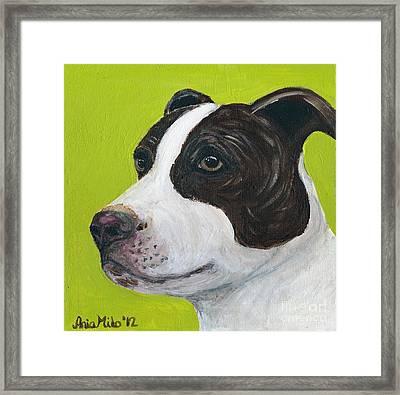 Jethro On Green Framed Print