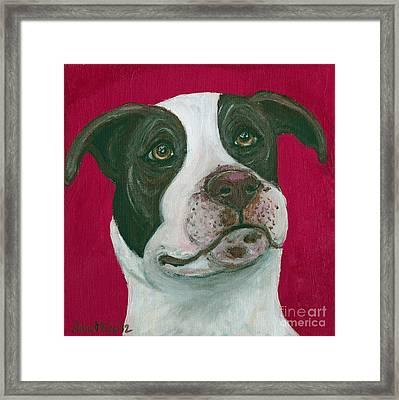 Jethro On Red Framed Print