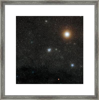 Jewel Box Star Cluster And Mimosa Framed Print