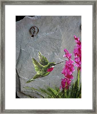 Framed Print featuring the photograph Jewel In Flight by Rhonda McDougall