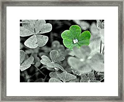 Jeweled Clover Framed Print