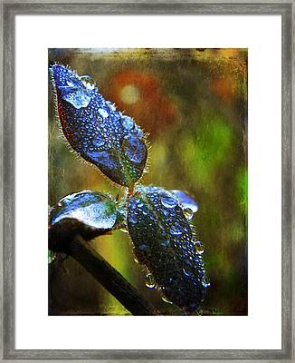 Jeweled Leaves Framed Print by Leah Moore