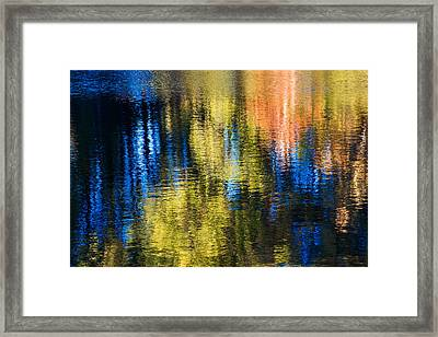 Jeweled Reflection 1 Framed Print