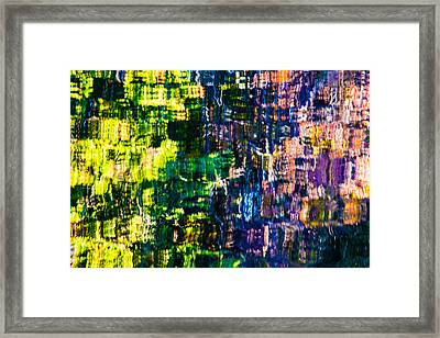 Jeweled Reflection 4 Framed Print