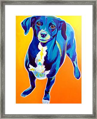 Chiweenie - Jewels Framed Print by Alicia VanNoy Call