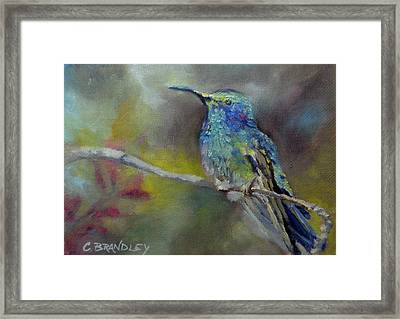 Jewels Of Nature Framed Print