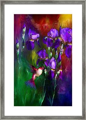 Jewels Of Summer Framed Print by Carol Cavalaris