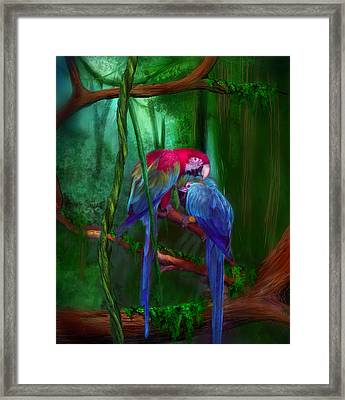 Jewels Of The Jungle Framed Print
