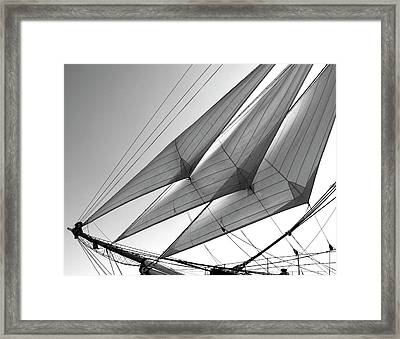 Jib Sails Framed Print