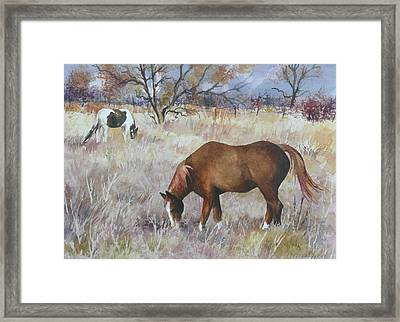 Jill's Horses On A November Day Framed Print by Anne Gifford