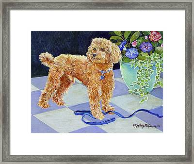 Jimmy Caruso Framed Print by Kimberly McSparran