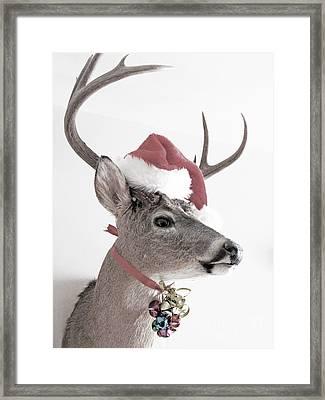 Jingle Deer Framed Print