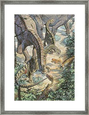 Jobaria Sauropods And Afroventor Framed Print