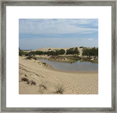 Framed Print featuring the photograph Jockey's Ridge 3 by Cathy Lindsey