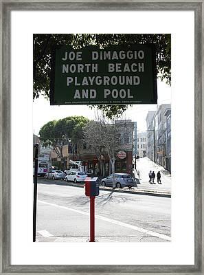 Joe Dimaggio Park Framed Print