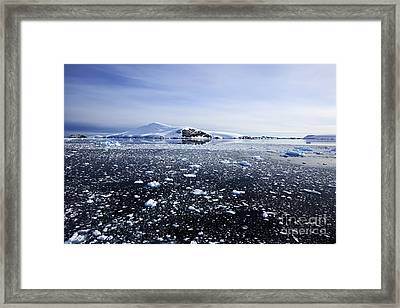 Joe Fox Fine Art - Brash Ice Floating In The Lemaire Channel Sea Around Antarctica Framed Print by Joe Fox