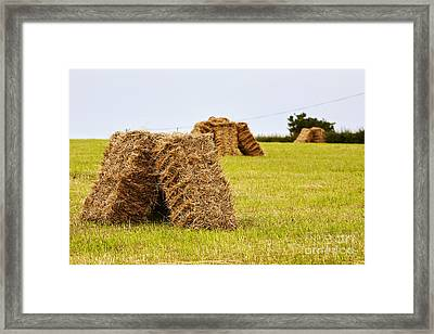 Joe Fox Fine Art - Square Hay Bales Drying In A Field At Harvest Time Framed Print by Joe Fox