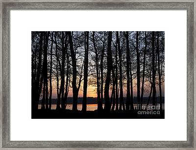 Joe Fox Fine Art - Sun Setting Through Trees On Lough Neagh Northern Ireland Framed Print by Joe Fox