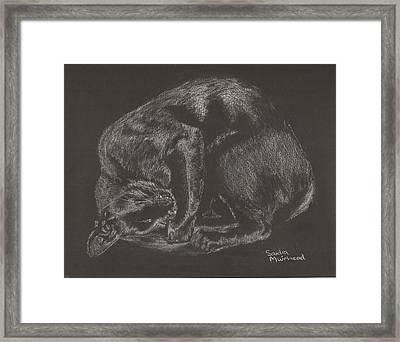 joe Framed Print