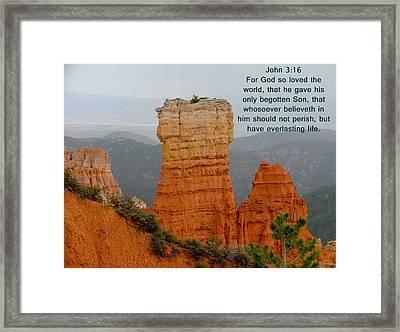 Bryce N. P.  John 3-16 Framed Print